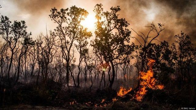 Αμαζονίου φωτιές