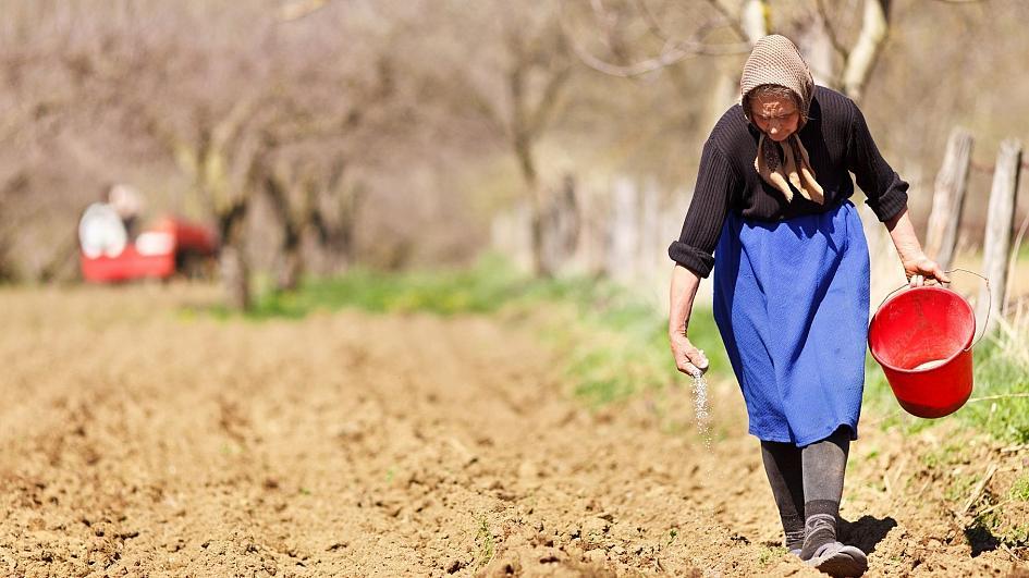 γεωργία γυναίκες