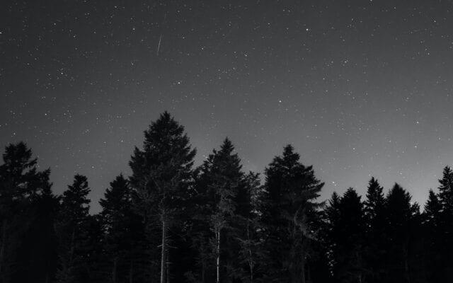 Βροχή αστέρων
