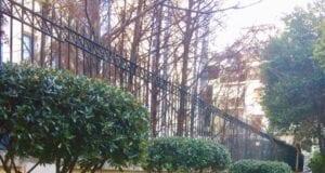 πάρκο «Παύλου Μπακογιάννη»