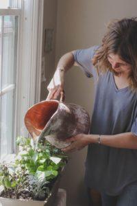 Περιποίηση φυτών