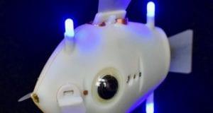 ρομπότ ψάρια
