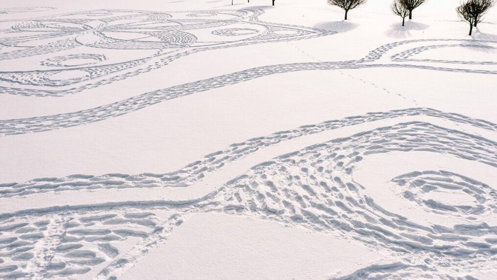 χιόνι τέχνη
