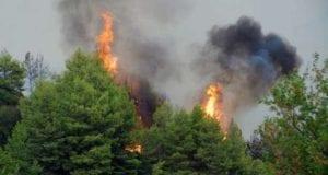 πυρκαγιών
