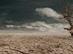 ξηρασία - καλοκαίρια