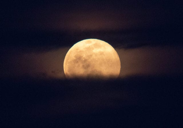 ροζ φεγγάρι