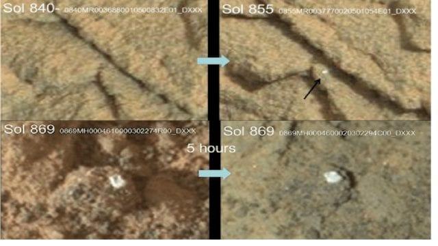 NASA fungionmars