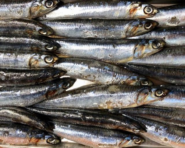 fish omerga3
